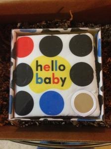 Priddy Books Hello Baby Mirror Cloth Book